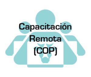 capacitacion remota progan cop